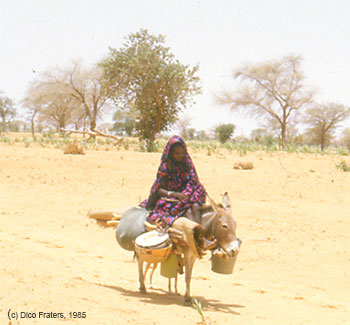 A woman on a donkey travelling in Niger